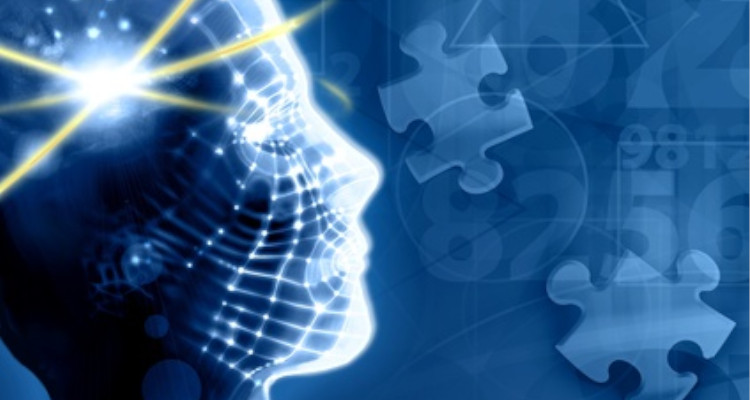 stages.enligne-au.com : Internship seekers